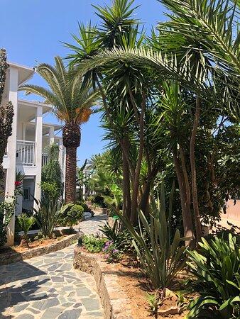 Foto de Happy Days Hotel and Bungalows, Creta: Salate mittags - Tripadvisor