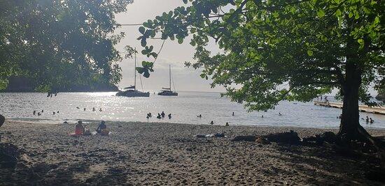 Bilder på Anse Noire – Bilder på Martinique - Tripadvisor