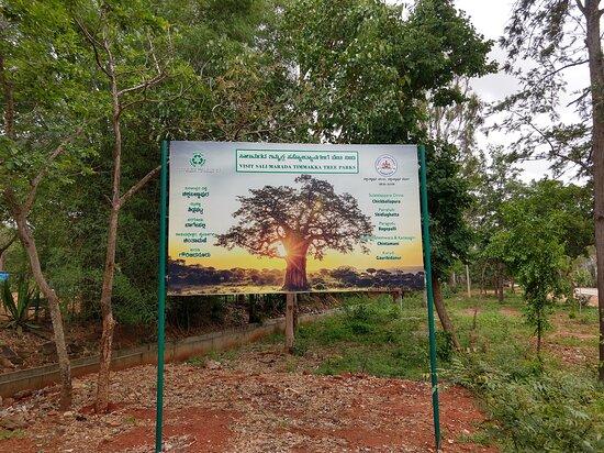 Salumarada Tree Park