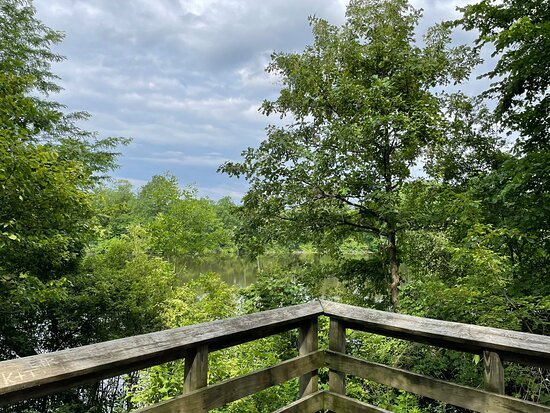 Oakwoods Nature Preserve
