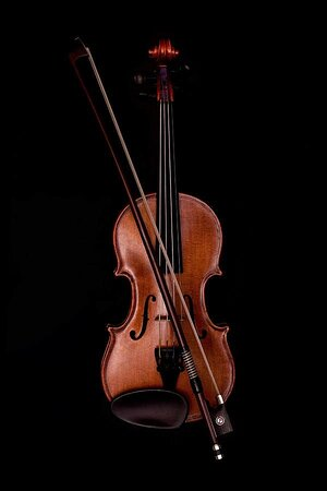 Palakkad District, Índia: A violin saw a movie of same name in malayalam movie a decade old theres a scene in the titanic( movie)( 1996 or so) where theres a group of violinists playing violin for the last it may have just been an addition to the movie the original titanic may not have had that guess my thought