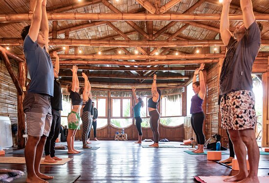 Yoga Montañita