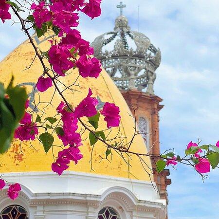 Enjoy the colorful bougainvilleas throughout the city. 🕍 Disfrute de las coloridas bugambilias en toda la ciudad. 🕍