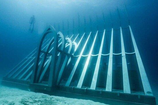 Crucero por la Gran Barrera de Coral y MOUA desde Townsville o...