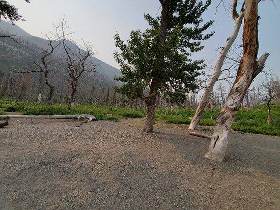 Crandell Lake Trail