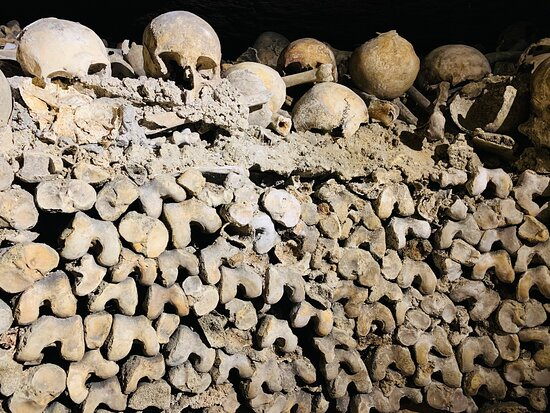 Tripadvisor - Interesting backstory of how the bones came to be down there. - صورة The Paris Catacombs، باريس