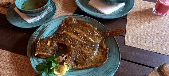 Бесподобные рыбные блюда