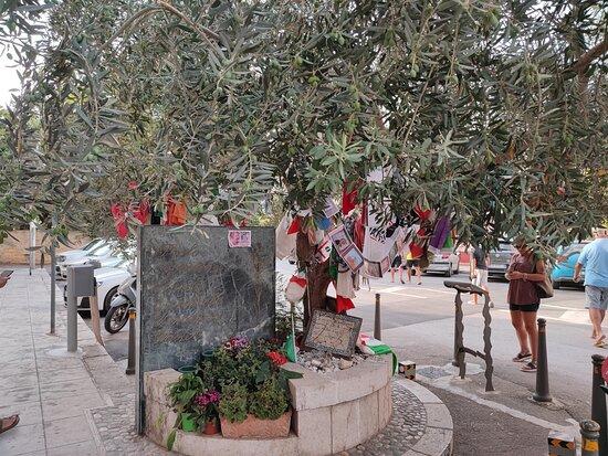 Albero della pace in via D'Amelio