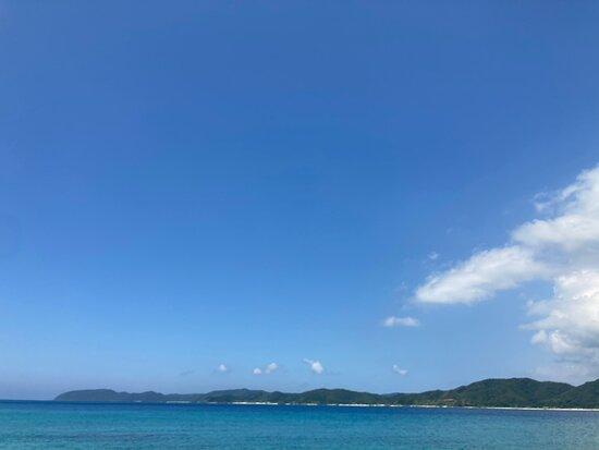 Tatsugo-cho Photo