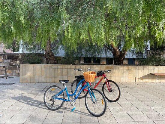 Parramatta Bike Tours