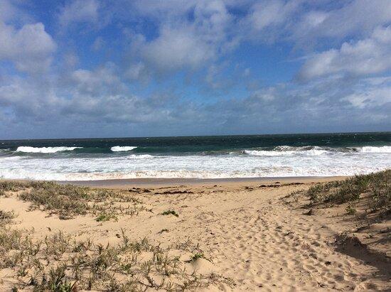Singleton Foreshore & Beach