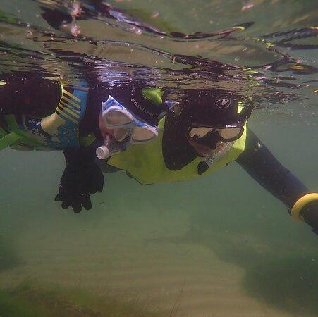 Snorkel Wild