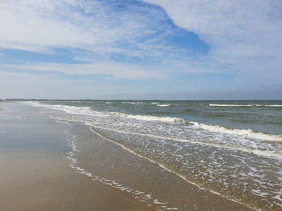 Uitzicht vanaf het terras van het strandhuis in Wijk aan Zee. - Foto van Het Strandhuis, Wijk aan Zee - Tripadvisor