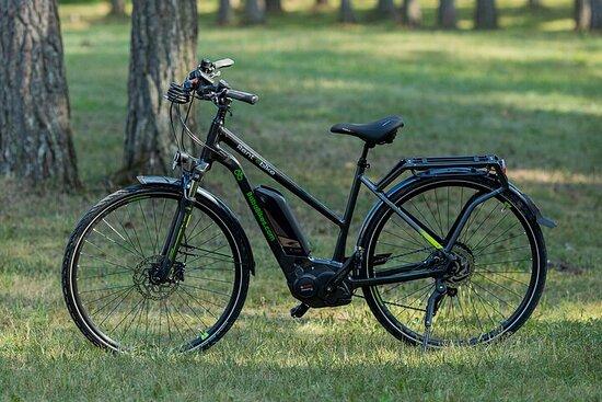 Electric Bicycle Rental in Zlatibor, Serbia