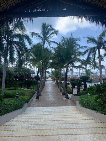 Il y a tout, tout, TOUT ce qu'il faut pour passer des vacances de rêves !!!!😍 Plages de sable blanc, eaux turquoises, restaurants européens et locaux, piscines, bars, clubs pour enfants, etc ….  etc ….
