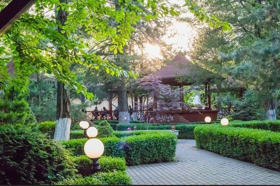 Quiet, cool garden, with exceptional cuisine, a dream location!