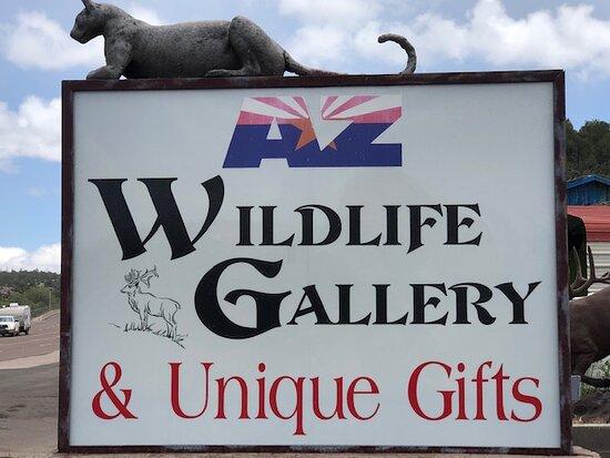 Az Wildlife Gallery