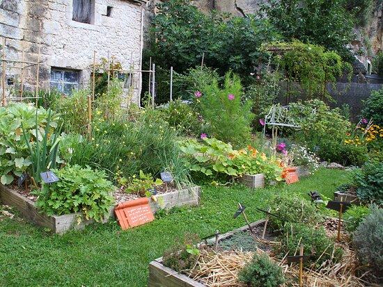 Jardin en carrés, cultivé au naturel