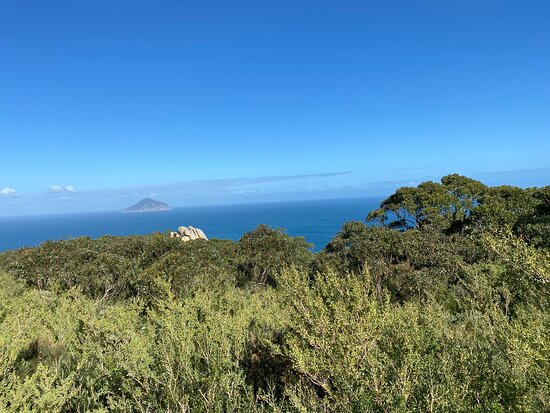 Walked from the car park to South point. Southern most tip of mainland Australia. Brilliant views. 30km round trip. Hard and steep in parts  6 hours  all up