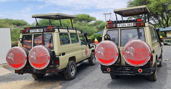 Tanzania Wildcats Safaris some  of our safari Vehicle ready for adventures to Ngorongoro Crater Tanzania