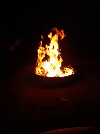Fire Pit/Ring