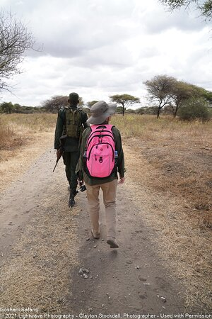 Escorted by an Armed Ranger for a Walking Tour, Tarangire National Park, Tanzania