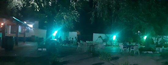 Nocturna en nuestra terraza