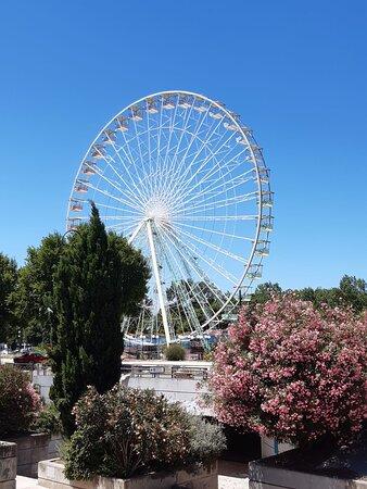 Avignon, France: Bonjour!.✌✌