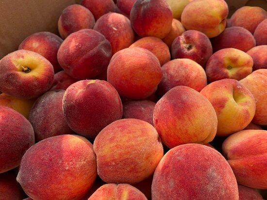 Peaches at Cider Keg Farm Market