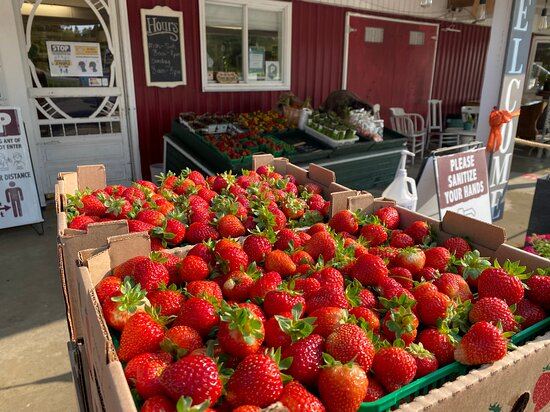 Freshly picked strawberries arrive daily at Cider Keg Farm Market from Farmer Tom's patch.
