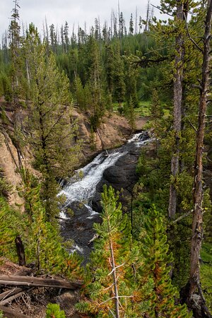 Roam Summer Safari Tour Out of West Yellowstone: Little Gibbons Falls