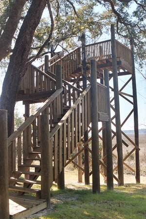 The treehouse gives visitors a birds-eye view of the forest canopy and the pristine salt marsh beyond.