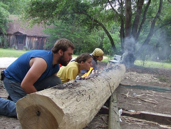 University students participate in experimental archaeology as they work on building a dugout canoe using only technology available to Native Guale Indians.