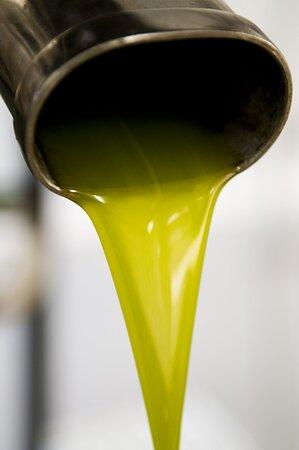 L'or vert de Provence
