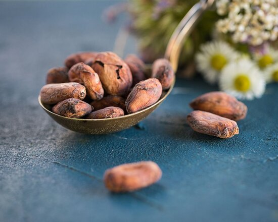 Organic Criollo cacao beans