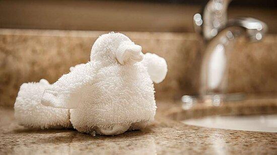 Guest Bathroom Duck 1