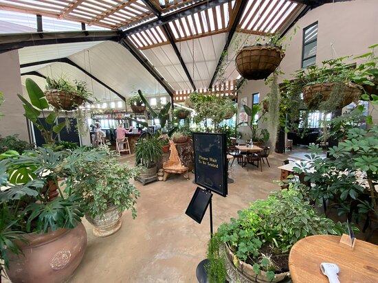 The Atrium Entrance to Blueberry Cafe