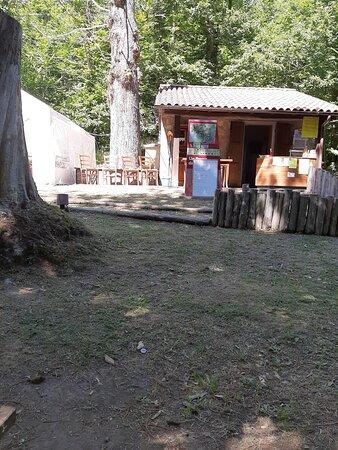 Ottimo locale, per un pasto o un aperitivo all'ombra dei pini