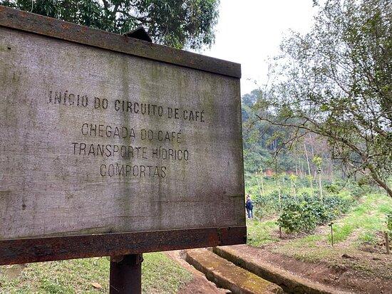 Fazenda Allianca Agro