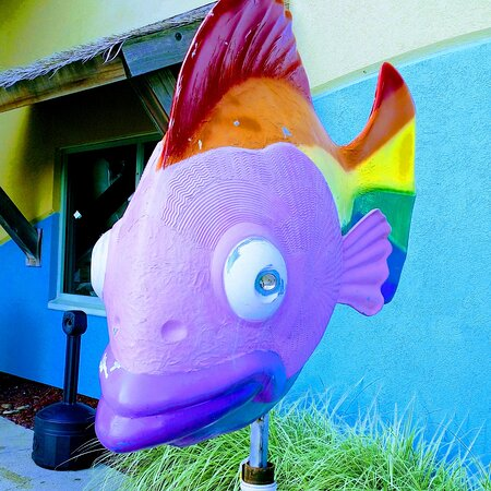 Entry fish