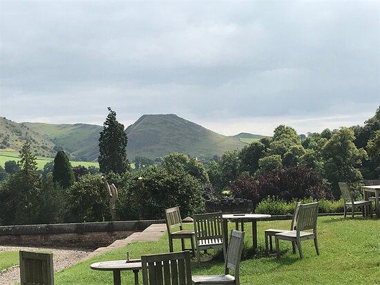 Cafe garden view
