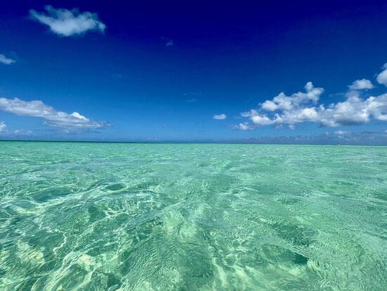 Turks-och Caicos: Our snorkeling trip