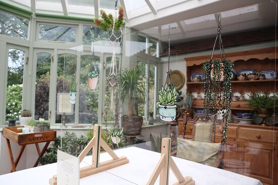 The conservatory full of wonderful plants with the empty table which was soon groaning under the weight of our generous wonderful breakfast
