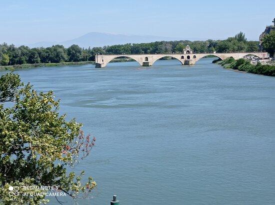 Puente en Avignon