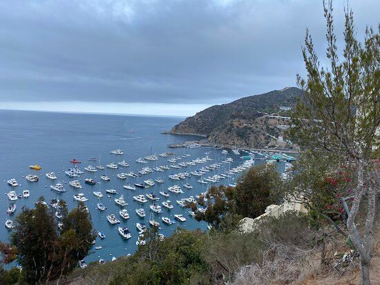 Harbor view Catalina