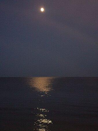 Riflessi della luna sul mare