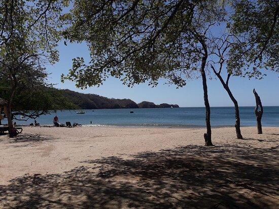 beacha2