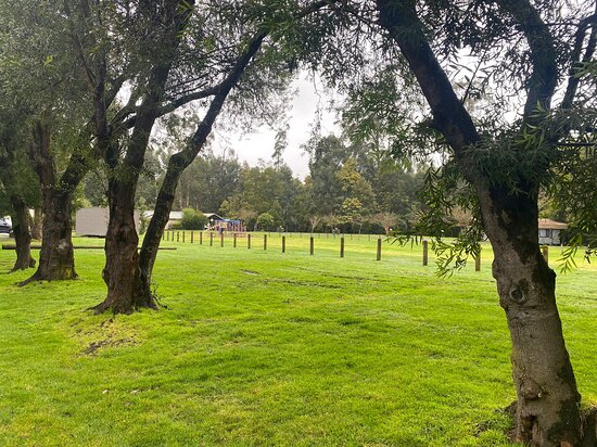 Lush Green Sites