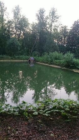 пруд для рыбалки
