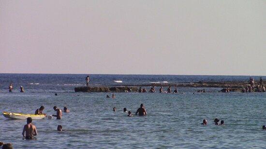 Affacciato sull'isola delle correnti